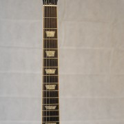 Gibson Les Paul Standard 2005 Tiger Top 05